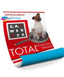 hartie-blueback